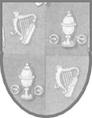 памятное клеймо Дублина 1987